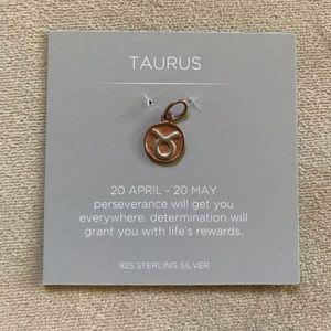 Origami owl Taurus charm